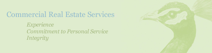 Indianapolis based real estate services & development